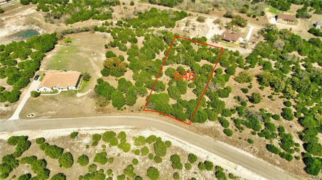 646 Wagon Wheel Trl, Bertram, TX 78605 (#5836773) :: Realty Executives - Town & Country