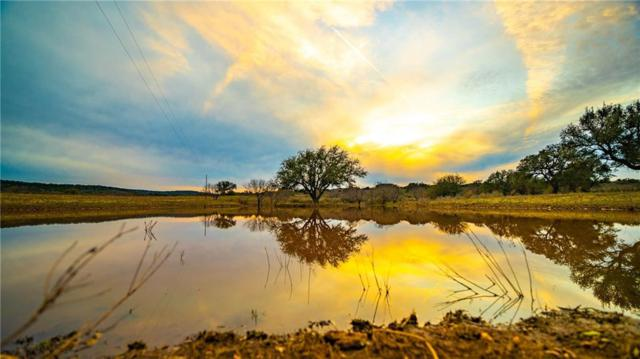 00 Cr 308, Round Mountain, TX 78663 (#5860688) :: Zina & Co. Real Estate