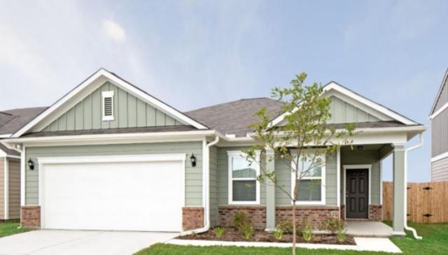 13520 Arthur Vandenburg Way, Manor, TX 78653 (#5871752) :: The Heyl Group at Keller Williams