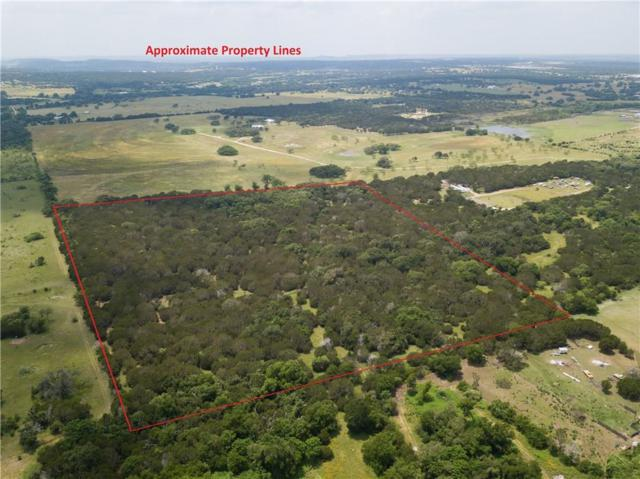 24.487 Acres Buckhorn, Bertram, TX 78605 (#5910434) :: The Perry Henderson Group at Berkshire Hathaway Texas Realty