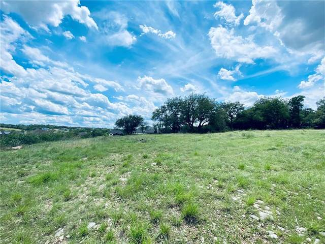 105 Horizon Ridge Cv, Liberty Hill, TX 78642 (#5912386) :: Zina & Co. Real Estate