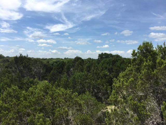 2590 County Road 289, Georgetown, TX 78633 (#5932931) :: Lauren McCoy with David Brodsky Properties