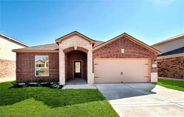 19709 Hubert R. Humphrey Rd, Manor, TX 78653 (#5939711) :: Papasan Real Estate Team @ Keller Williams Realty