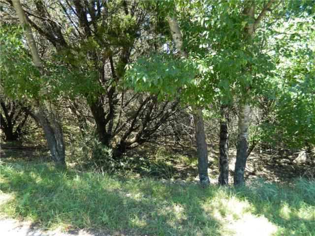 5113 Moss Pt, Lago Vista, TX 78645 (#5950146) :: Realty Executives - Town & Country