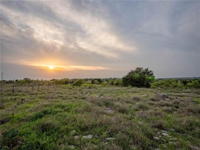 Lot 66 Three Creeks Dr, Bertram, TX 78605 (#5953895) :: Papasan Real Estate Team @ Keller Williams Realty