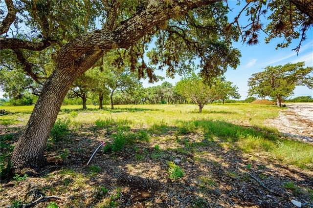 001 W Flying Owl Dr, Dripping Springs, TX 78620 (#5962374) :: Resident Realty