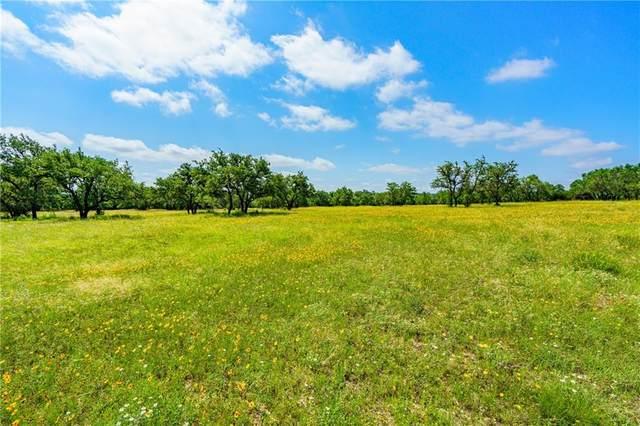 116 Bluff Point Ct, Marble Falls, TX 78654 (#5975038) :: Papasan Real Estate Team @ Keller Williams Realty