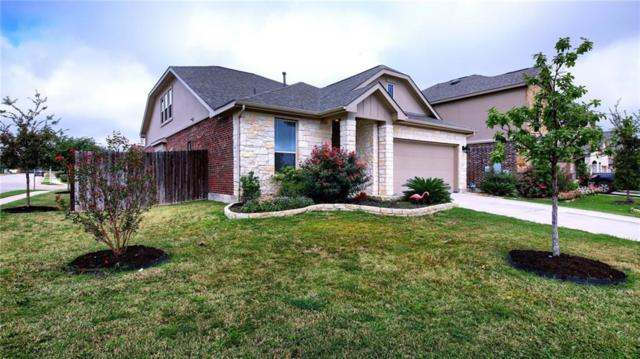 1233 Gaviota Ln, Leander, TX 78641 (#5994745) :: The Heyl Group at Keller Williams