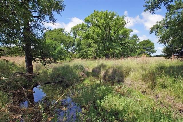 Lot 3 County Road 224, Briggs, TX 78608 (#6003258) :: The Heyl Group at Keller Williams