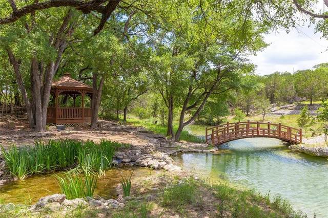 699 Hillview Cir, Dripping Springs, TX 78620 (#6006062) :: The Perry Henderson Group at Berkshire Hathaway Texas Realty