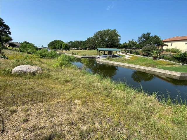228 Green Acres Dr, Granite Shoals, TX 78654 (#6007760) :: Watters International