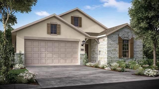 110 Beryl Way, Dripping Springs, TX 78620 (#6009762) :: Ben Kinney Real Estate Team