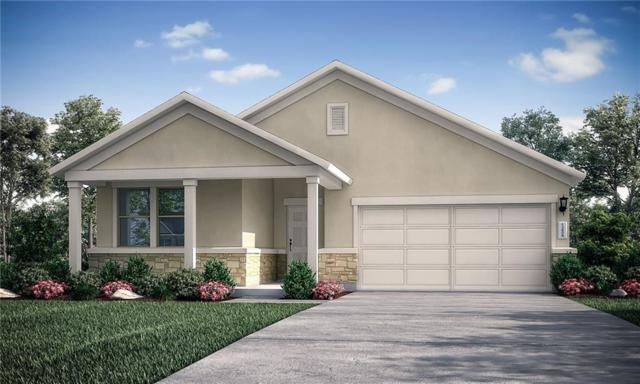 329 Coba Street, Leander, TX 78641 (#6012715) :: Papasan Real Estate Team @ Keller Williams Realty