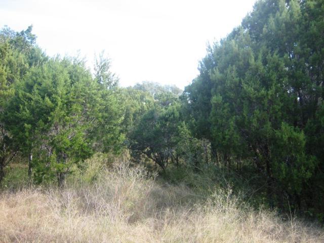 18505 E Lakeview Dr, Lago Vista, TX 78645 (#6027549) :: The ZinaSells Group