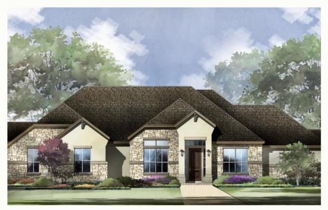 320 Dally Ct, Dripping Springs, TX 78620 (#6042743) :: The Heyl Group at Keller Williams