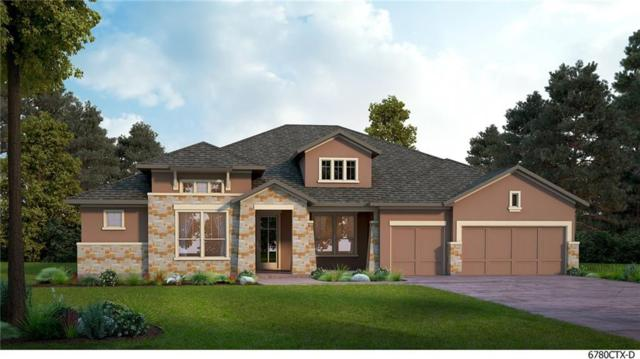 117 Townes Ct, Dripping Springs, TX 78620 (#6044650) :: Papasan Real Estate Team @ Keller Williams Realty