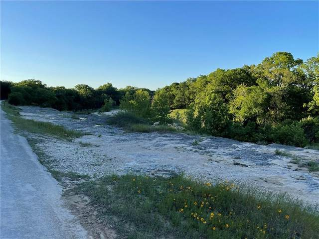 5400 County Road 223, Kempner, TX 76539 (#6050265) :: Realty Executives - Town & Country
