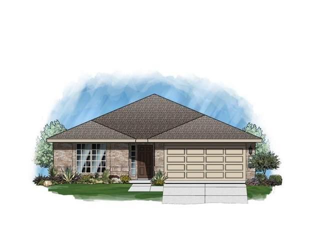 345 Horsemint Way, San Marcos, TX 78666 (#6056502) :: Azuri Group | All City Real Estate