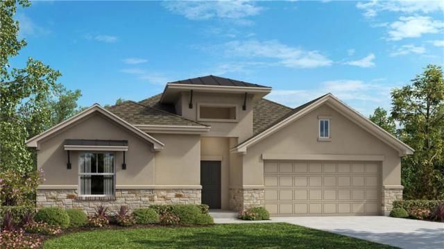 1176 Nutmeg Trail, New Braunfels, TX 78132 (#6060353) :: Forte Properties