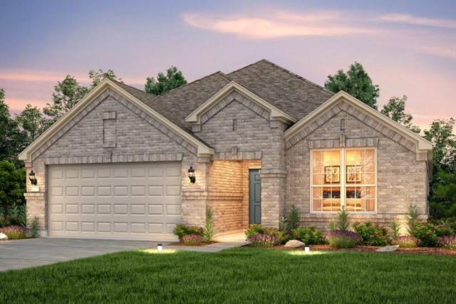 6021 Gimignano Pl, Round Rock, TX 78665 (#6080424) :: Lancashire Group at Keller Williams Realty