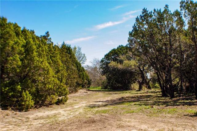 17867 Fm 963, Bertram, TX 78605 (#6085791) :: Zina & Co. Real Estate