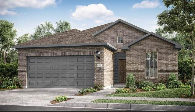 5275 Corelli Fls, Round Rock, TX 78665 (#6089229) :: The Summers Group
