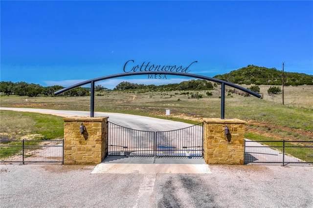 LOT 60 Cottonwood Mesa Dr, Kempner, TX 76539 (#6096705) :: Realty Executives - Town & Country
