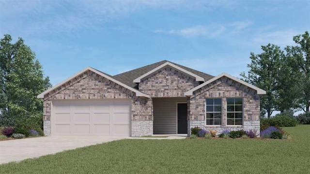 857 Armadillo Dr, Seguin, TX 78155 (#6098112) :: The Perry Henderson Group at Berkshire Hathaway Texas Realty