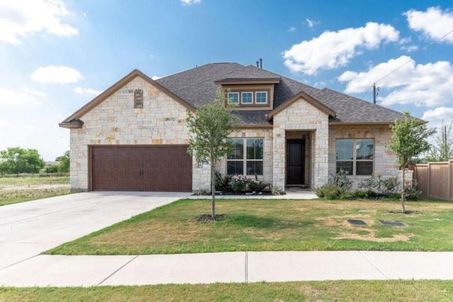 3553 De Soto Loop, Round Rock, TX 78665 (#6099706) :: Douglas Residential
