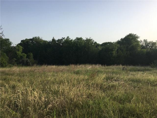 1233 County Road 257, Liberty Hill, TX 78642 (#6121372) :: Zina & Co. Real Estate