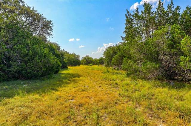 Lot 6 TBD County Road 204, Liberty Hill, TX 78642 (#6121835) :: Tai Earthman | Keller Williams Realty