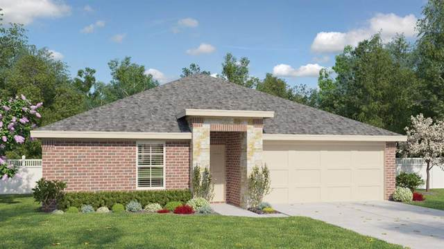 217 Baum Dr, Georgetown, TX 78626 (#6123453) :: The Perry Henderson Group at Berkshire Hathaway Texas Realty