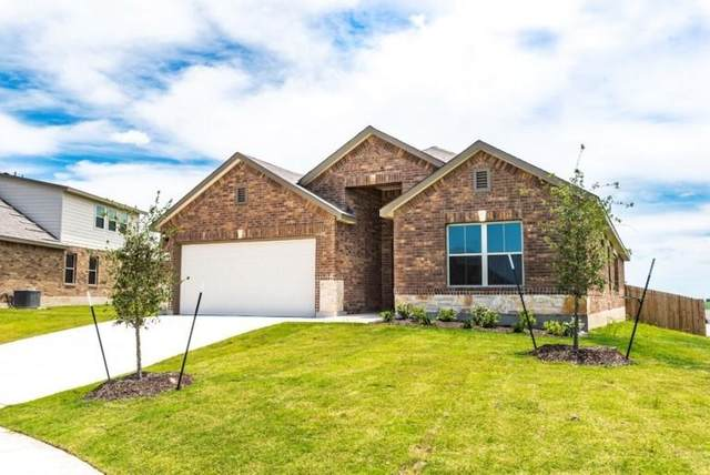 1014 Honey Locust Way, Hutto, TX 78634 (#6134571) :: The Heyl Group at Keller Williams