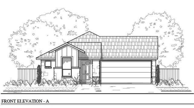 156 Horsemint Way, San Marcos, TX 78666 (#6135442) :: Ana Luxury Homes