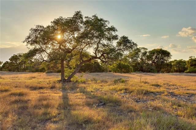 Ranch #9 Liberty Ranch Rd, Buda, TX 78610 (#6139288) :: Kourtnie Bertram | RE/MAX River Cities