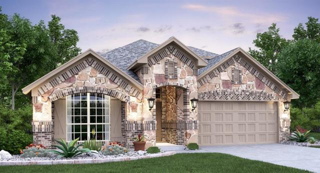 1230 Chad Dr, Round Rock, TX 78665 (#6141664) :: The ZinaSells Group