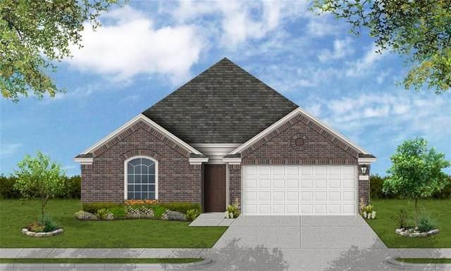 905 Del Raphael Dr, Leander, TX 78641 (#6141919) :: Zina & Co. Real Estate