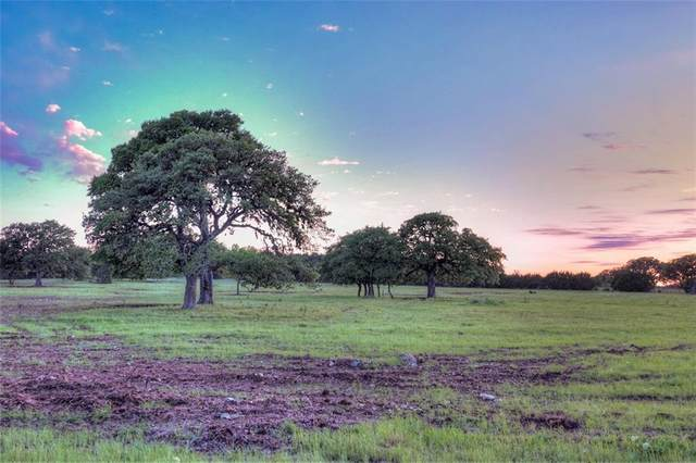 2000 Prairie View Trail Rd, Driftwood, TX 78619 (#6152662) :: Realty Executives - Town & Country