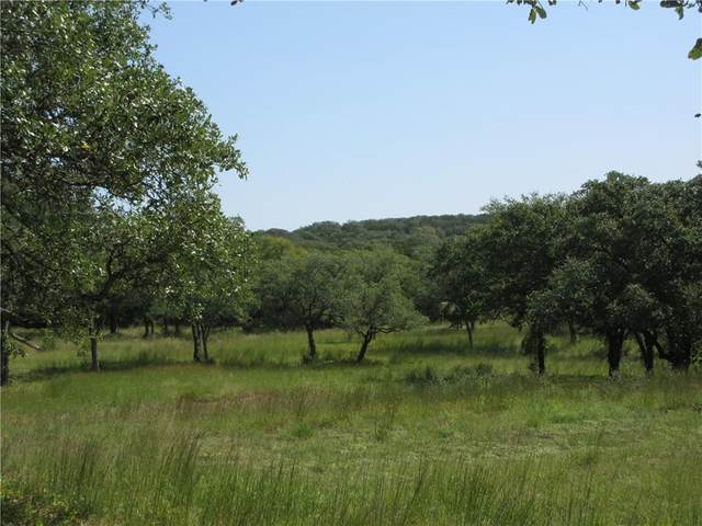 315 Rolling Hills Dr, Wimberley, TX 78676 (#6152771) :: Azuri Group | All City Real Estate