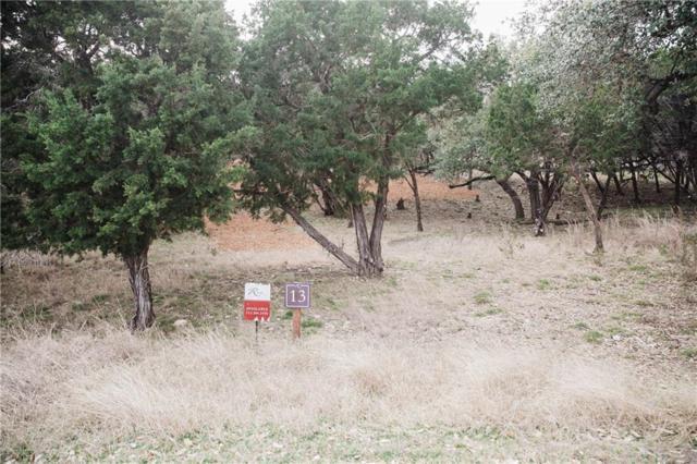 1901 Barbaro Way, Spicewood, TX 78669 (#6156313) :: The Heyl Group at Keller Williams