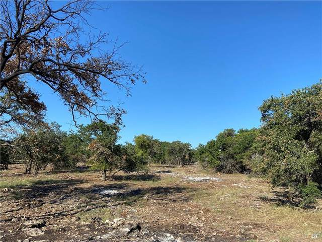 TBD Lot 168 Wandering Oaks Circle Cir, Burnet, TX 78611 (#6160800) :: Sunburst Realty