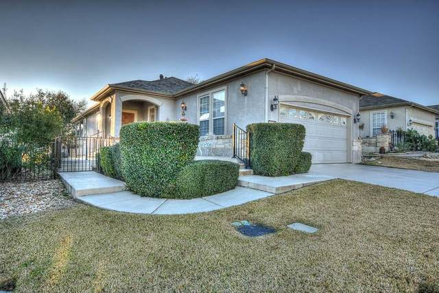 203 Limestone Shoals Ct, Georgetown, TX 78633 (#6165721) :: 12 Points Group