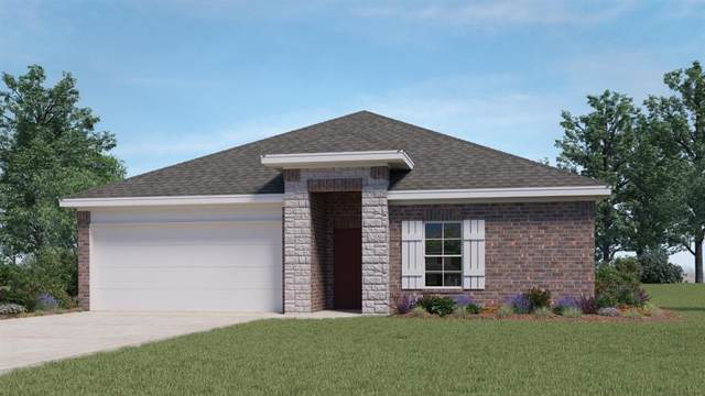 262 Fall Aster Dr, Kyle, TX 78640 (#6176706) :: All City Real Estate