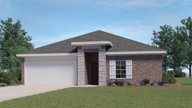 262 Fall Aster Dr, Kyle, TX 78640 (#6176706) :: Papasan Real Estate Team @ Keller Williams Realty