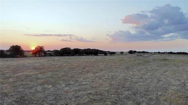 TBD - Lot 7 County Road 224, Florence, TX 76527 (#6197761) :: The Heyl Group at Keller Williams