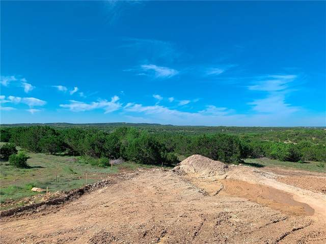 559 Vail River Rd, Dripping Springs, TX 78620 (#6201083) :: The Perry Henderson Group at Berkshire Hathaway Texas Realty