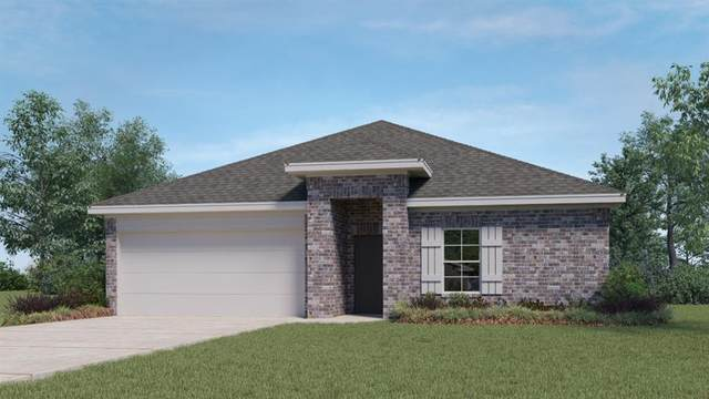 372 Fall Aster Dr, Kyle, TX 78640 (#6202884) :: All City Real Estate