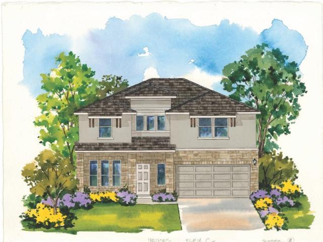 3901 Lyndsey Marie Lane, Pflugerville, TX 78660 (#6207072) :: Ana Luxury Homes