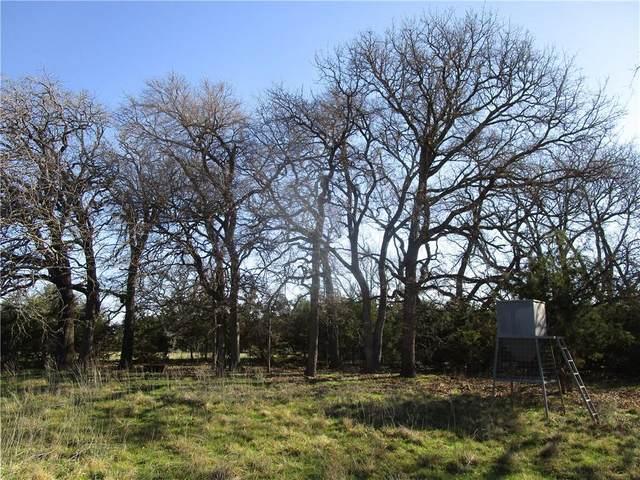 1507 Hidden Springs Dr, Salado, TX 76571 (#6220230) :: First Texas Brokerage Company