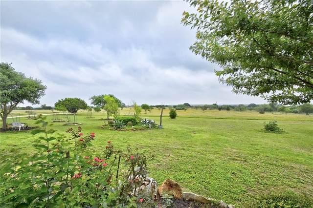137 Maverick Cv, New Braunfels, TX 78132 (#6224819) :: Green City Realty
